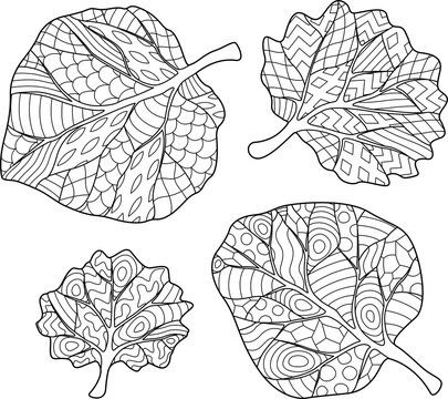 Coloring Book page with four leaves on white background