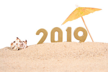 2019 year golden figures with seashell on a white
