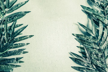 Wall Mural - Tropical Palm leaves on light green background frame, top view