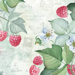 Watercolor Vintage Background with Sweet Raspberry