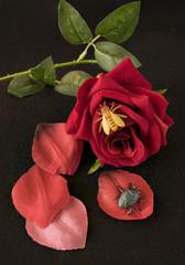 Representación de una flor de jardín con insectos de plástico.