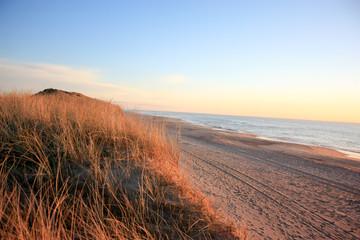 The beautifull beach of denmark