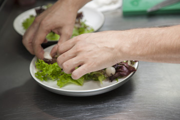 The hands of the chef preparing a salad of greens