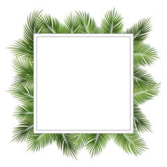 Wall Mural - Vector summer poster framed with green palm leaves on white background.