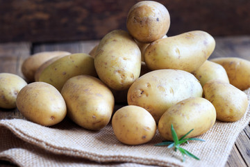 erntefrische Kartoffeln
