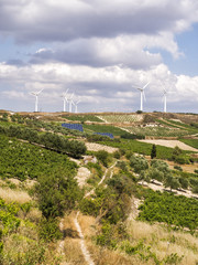 Wind Farm and Olive field with blue sky and clouds at Crete Island, Greece