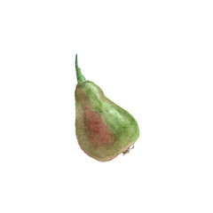 Green small pear isolated on white. Watercolor illustration