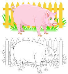 Colorful and black and white pattern for coloring. Illustration of cute pig. Worksheet for children and adults. Vector image.