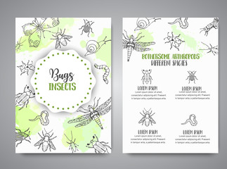 Bugs insects hand drawn banner. Pest control concept. Entomology poster Cartoon illustration of pests and bug. Vector illustration concept