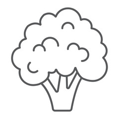 Broccoli thin line icon, vegetable and diet, vegetarian sign, vector graphics, a linear pattern on a white background, eps 10.