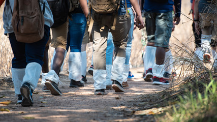 Group of people walking in the forest and wearing Anti Leech Socks, close up, traveling concepts.
