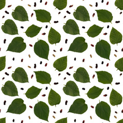 Isolated mulberry leaf seamless pattern in white background