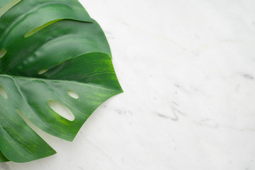 Top view of tropical leaf,monstera on to a marble  background ,blank space for adding text ,copy space, creative design concept.
