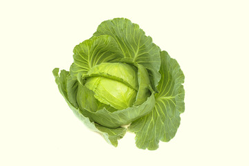 Fresh organic green cabbage, garden vegetable, food object isolated on white background