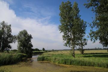 Natural polder in park Hitland along river Hollandse IJssel in Nieuwerkerk aan den IJssel.