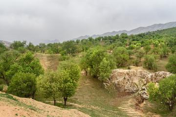 Nature landscape in Lorestan Province. Iran