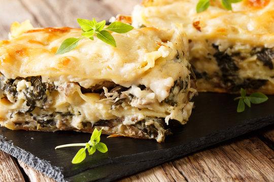 Italian lasagna with chicken, wild mushrooms, mozzarella and parmesan cheese and bechamel sauce close-up. horizontal