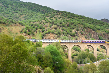 Railway bridge near Bisheh village. Iran