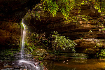 Tuinposter Bos rivier Pool of Siloam Blue Mountains Australia