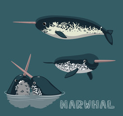 Narwhal Cartoon Vector Illustration