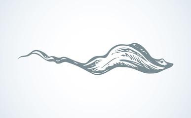 Stingray. Vector drawing