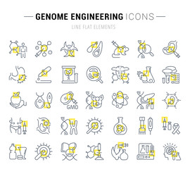 Set Vector Line Icons of Genome Engineering.