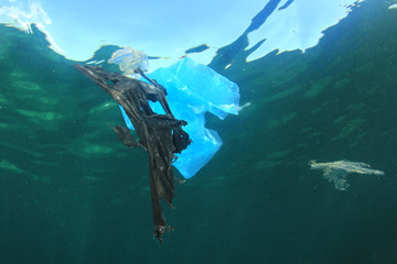 Plastic bags pollute ocean