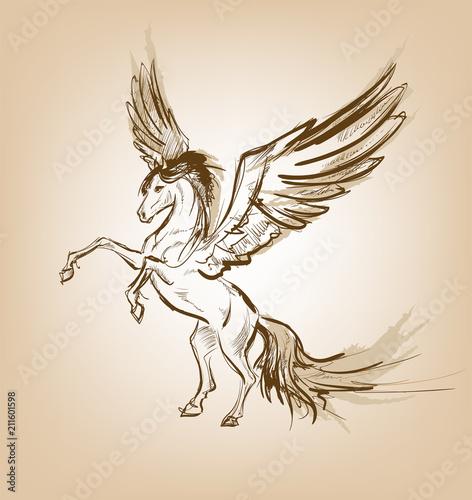 Pegasus Greek Mythological Creature Legendary Beast Concept Drawing