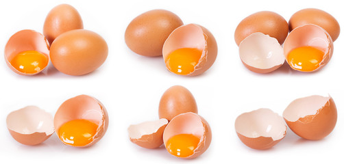 Collection of eggs on white background