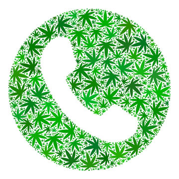 Phone number collage of marijuana leaves in variable sizes and green tints. Vector flat cannabis leaves are organized into phone number collage. Addiction vector design concept.