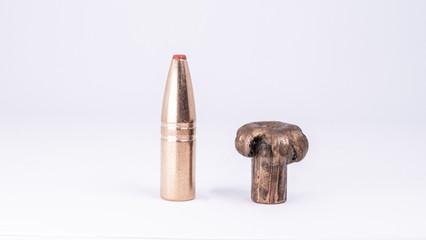 Shot & Expanded Bullet Tip 6