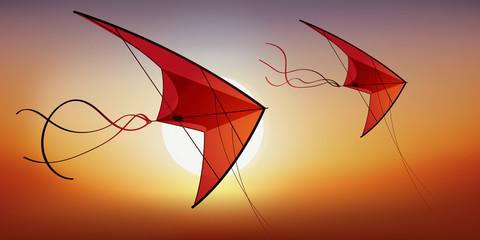 cerf volant - vacances - jeu de plein air - concept - loisir - plein air - symbole - liberté - 2