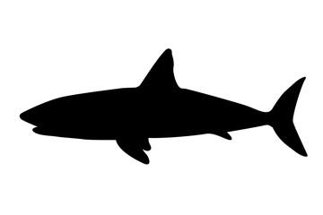 Silueta de tiburones.