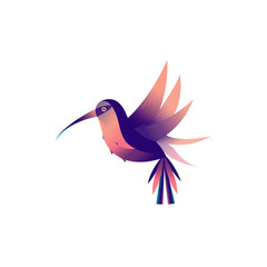 Flat illustration with hummingbirds on a white background.Flying colibri logo. For business, education and natural company logo Vector illustration.