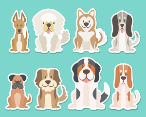 Sticker collection of different kinds of dogs. Sat dogs in front view position. Saint Bernard, boxer, sheepdog, husky. Vector illustration.