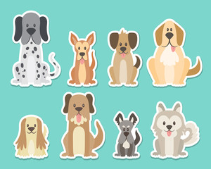 Sticker collection of different kinds of dogs. Sat dogs in front view position. Dalmatian, schnauzer, coker, german. Vector illustration.