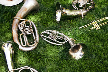 Several ancient musical wind instruments lie on the green grass in the park.
