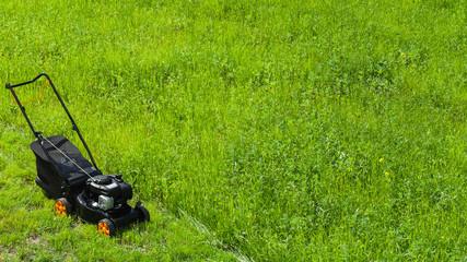 Grass cutter stands on fresh green lawn