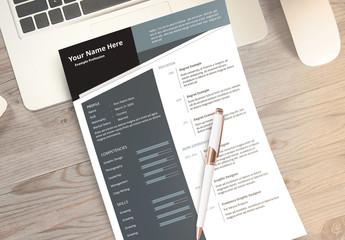 Resume Layout Set with Grey Sidebar