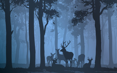 Wall Mural - herd of deer