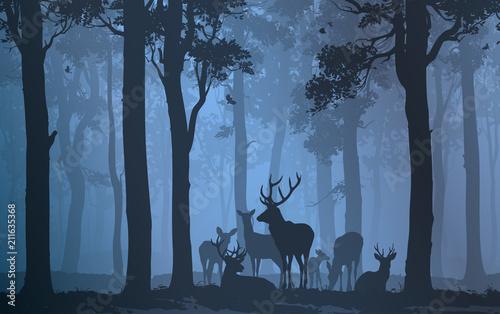 Wall mural herd of deer