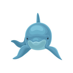 Blue dolphin swimming, front view vector Illustration on a white background