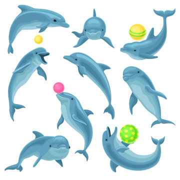 Cute blue dolphins set, dolphin jumping and performings tricks with ball for entertainment show vector Illustration on a white background