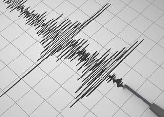 Seismograph - 3D