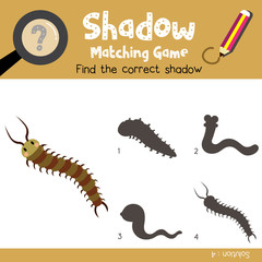 Shadow matching game of Cute Centipede animals for preschool kids activity worksheet colorful version. Vector Illustration.