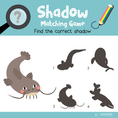 Shadow matching game of Funny Catfish animals for preschool kids activity worksheet colorful version. Vector Illustration.