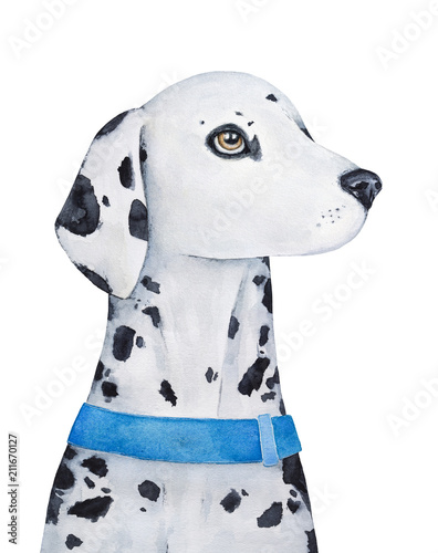 Dalmatian Dog Character Portrait Beautiful Eyes Unique Spotted