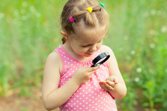Young girl exploring nature in the meadow with a magnifying glass looking at fir cone. Curious children in the woods, a future botanist.