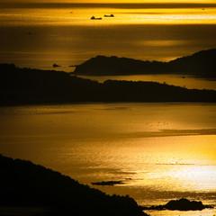 金色の日本の海