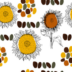 Hand drawn sunflower. Vector seamless pattern